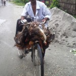 A poultry value chain player from West Bengal