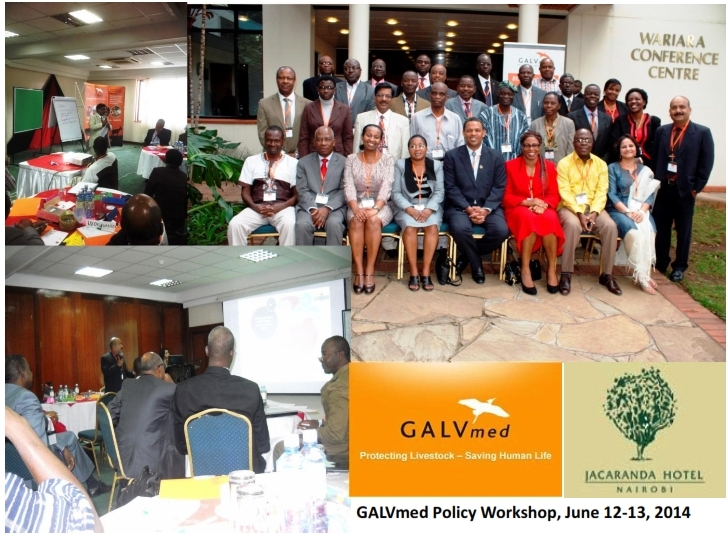 GALVmedPolicyWorkshop_VHIParticipation_001