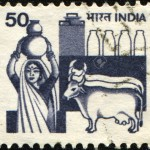 Indiadairy