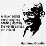 Mahatma-Gandhi-AnimalWelfare